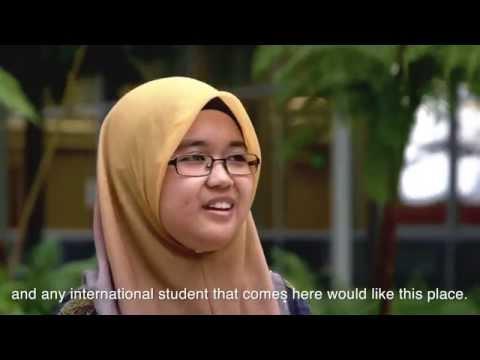 Study at UH Hilo (English Subtitles)