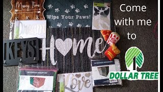 dollar tree haul whats new in store
