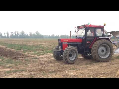 Case IH International 956 + trivomere Emmegiemme Gara di ara