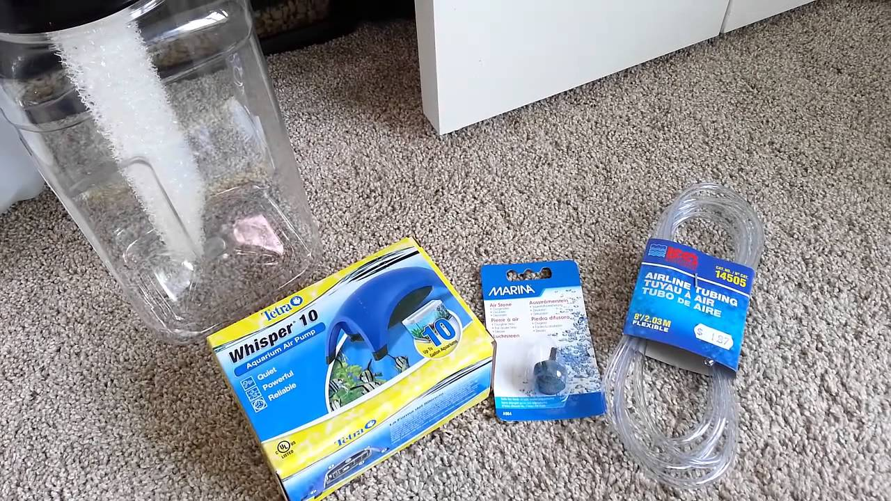 Diy Terrarium Humidifier Youtube