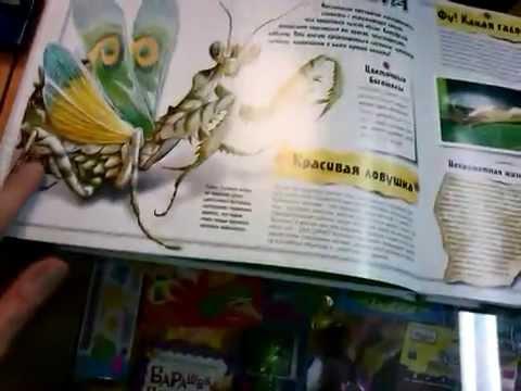 Книга о насекомых. Магазин Фея Зубцов.