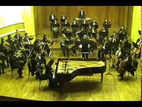 Beethoven Alandia I mov1
