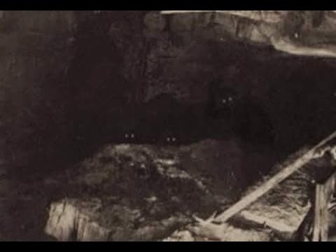 World Bigfoot Radio #27 ~ Subterranean Sasquatch/Rich Soule