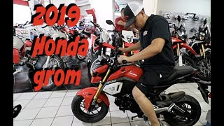 NEW TOY FOR THE CHANNEL / 2019 HONDA GROM
