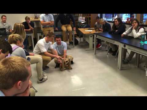Think, Make, Innovate: Catapults
