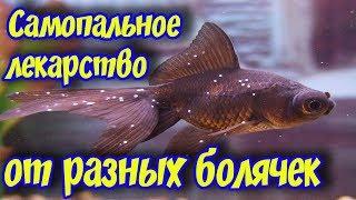 Самодельное лекарство для лечения аквариумных рыбок от многих болезней и паразитов!