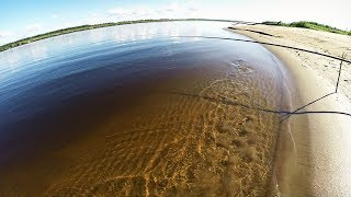 Рыбалка летом На поплавок и спиннинг на реке Печора