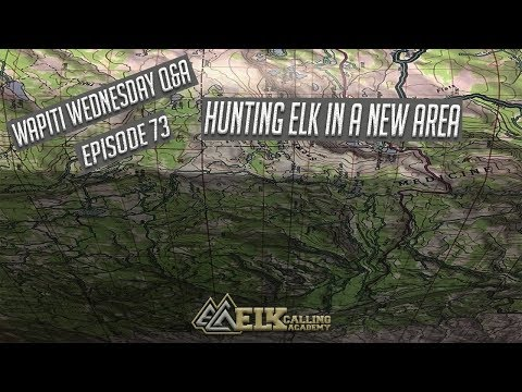 Strategies For Finding & Hunting Elk In New Areas