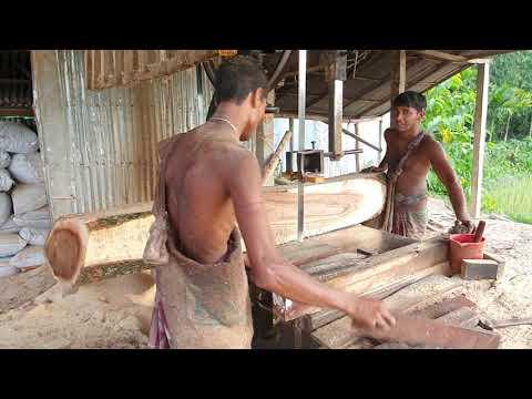 Teak Wood Cutting Lumber Mills।Teak Cutting Board, Wood Cutting Board।Timberking Sawmill in Asia