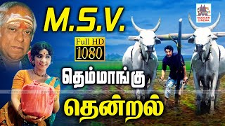 MSV Themmangu Thendral Songs