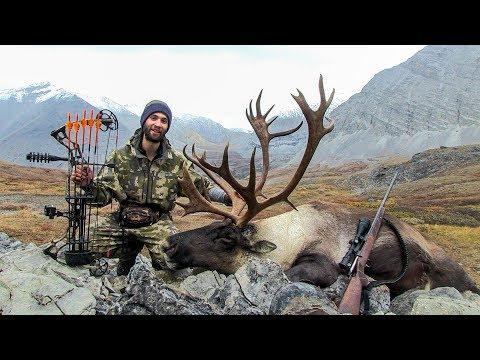 BOWZONE~ BC Mountain Caribou Hunt 2017