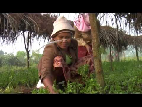 Integrated Community Driven Development English
