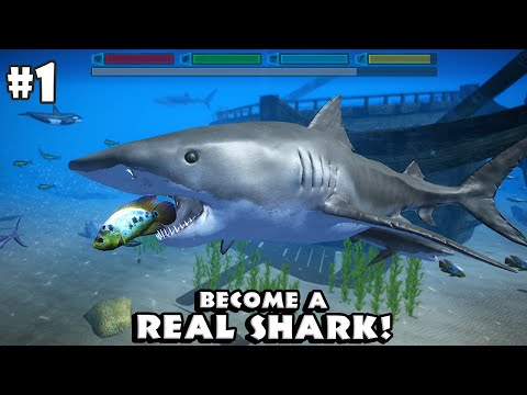 Ultimate Shark Simulator By Gluten Free Games - Android/iOS - Gameplay Part 1