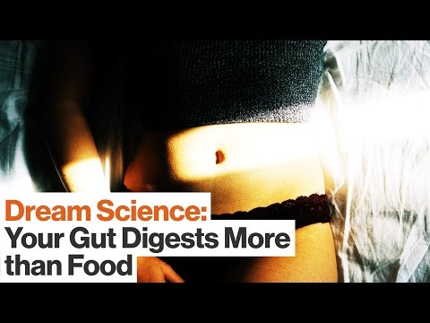 Your Gut Processes Emotion and Regulates Health While You Sleep | Dr. Emeran Mayer