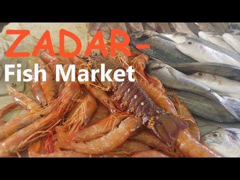 Fresh Fish Market in Zadar Croatia 🎣