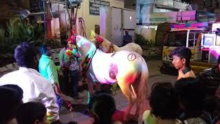 Horse Dance On Hyderabad Marfa Band