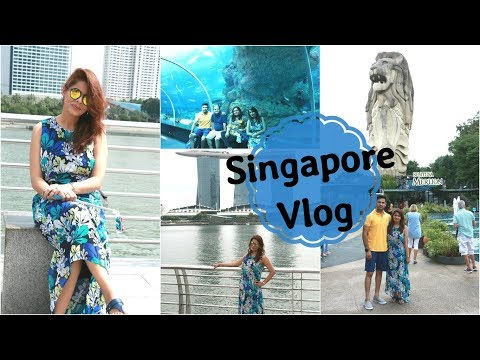 Travel Vlog : Singapore | Day 2 Part-1 | Singapore Flyer, Sentosa Island, Sea Aquarium | Kavya K