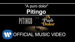 Pitingo - A puro dolor (Videoclip Oficial)
