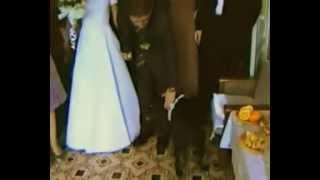 Нэнси на свадьбе