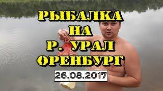 РЫБАЛКА в Оренбурге/Дневник рыбака #4 / 27 августа 2017 г.