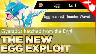 See Egg's Stats, Egg TMs, & Hatch Evolved Pokemon - Egg Exploit in Pokemon Sword and Shield