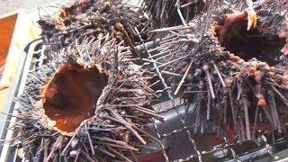 漁師が自分で大量にウニを獲って焼きウニにして食べる遊び!