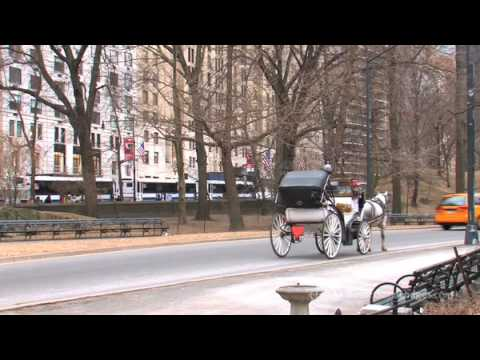 Manhattan, New York - Destination Video