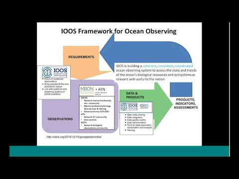 Observations to Understand Life in the Ocean: Linking IOOS Regional Efforts with MBON