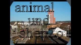 ShenZo feat. Animal -  WINTI CITY THE SLAYT