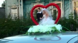 Свадебные кольца и ленты на машину.wmv