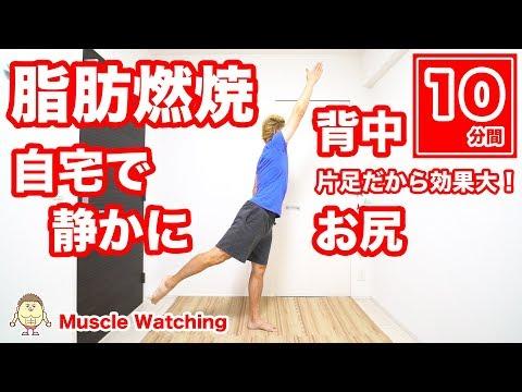 【10分】自宅で静かに背中とお尻の脂肪燃焼!簡単片足エクササイズ! | Muscle Watching