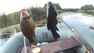 ПРИКОРМКА- ПЕСОК- УБИЙЦА ВСЕЙ РЫБЫ. Рыбалка на Карася и Линя. Ловля Линя и карася на поплавок.