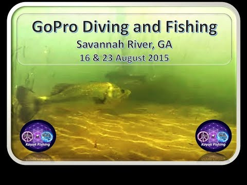 GoPro DIVING and Kayak Fishing the Savannah River, BASS and more, 16 & 23 AUG 2015