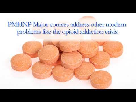 Psychiatric Mental Health Nurse Practitioner Major