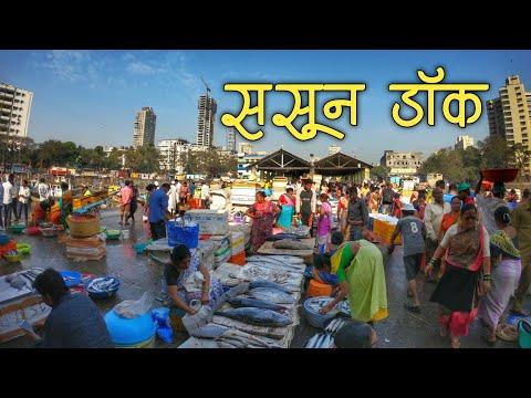 Sassoon Dock Fish Market | India भारतातील सर्वात जुने फिश मार्केट (Mumbai)