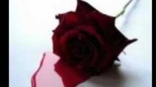 Rosa de Sangue - Adriano Correia de Oliveira