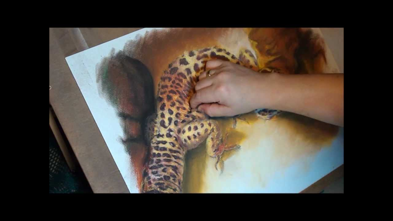 fast drawing leopard gecko in soft pastel youtube