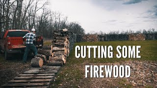 Oddly Satisfying Day of Cutting Firewood