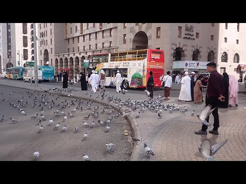 Saudi Arabia Travel Madina City Tour by Bus 2019