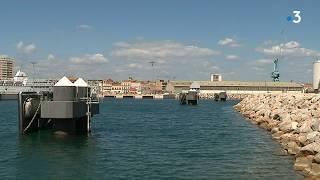 Le port de Sète inaugure son nouveau parc à bestiaux