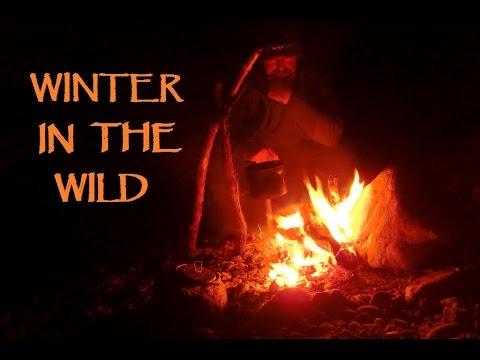 Winter In The Wild