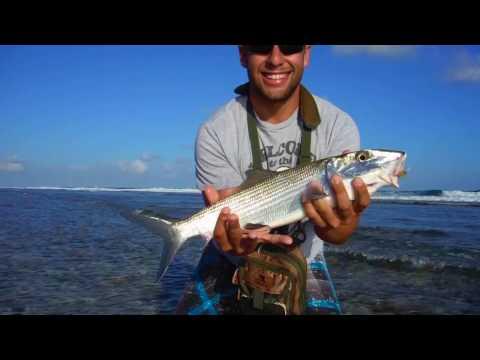 Fly Fishing Cayman Islands: Bonefish, Tarpon [Go Pro]
