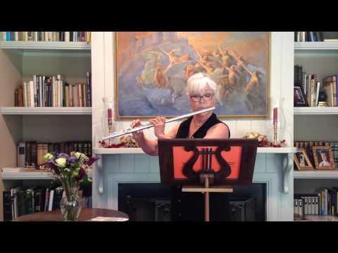 Brannen Flute No. 903 | Joan Sparks | Flute Pro Shop