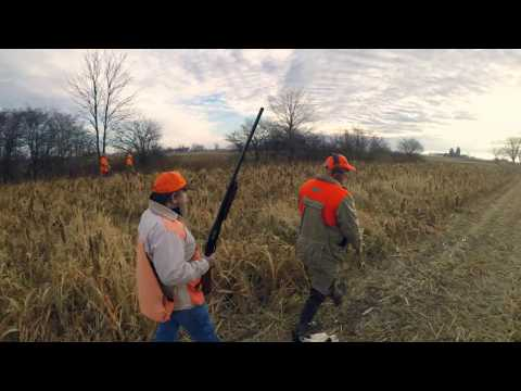 Cherrybend Pheasant Hunting - WV Feather Freaks