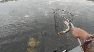 На Читском последняя рыбалка в этом 2020 году