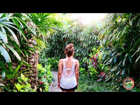 DREAM TRIP TO BALI INDONESIA 🌴 THE CHILLHOUSE BALI REVIEW | Deutsche Untertitel