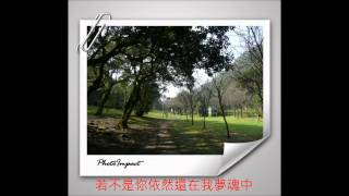 彭佳慧 - 舊夢 +歌詞- 陽明山的..720P HD