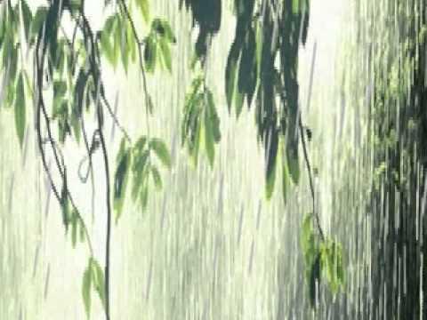 HAI MÙA MƯA-Sơn Tuyền.wmv