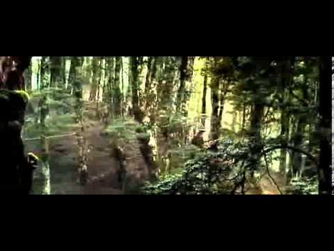 The Hobbit The Desolation of Smaug - BEORN