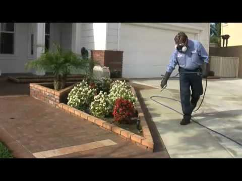 Pest Control Service - Antimite Termite &  Pest Control - Residential/Commercial Pest Control